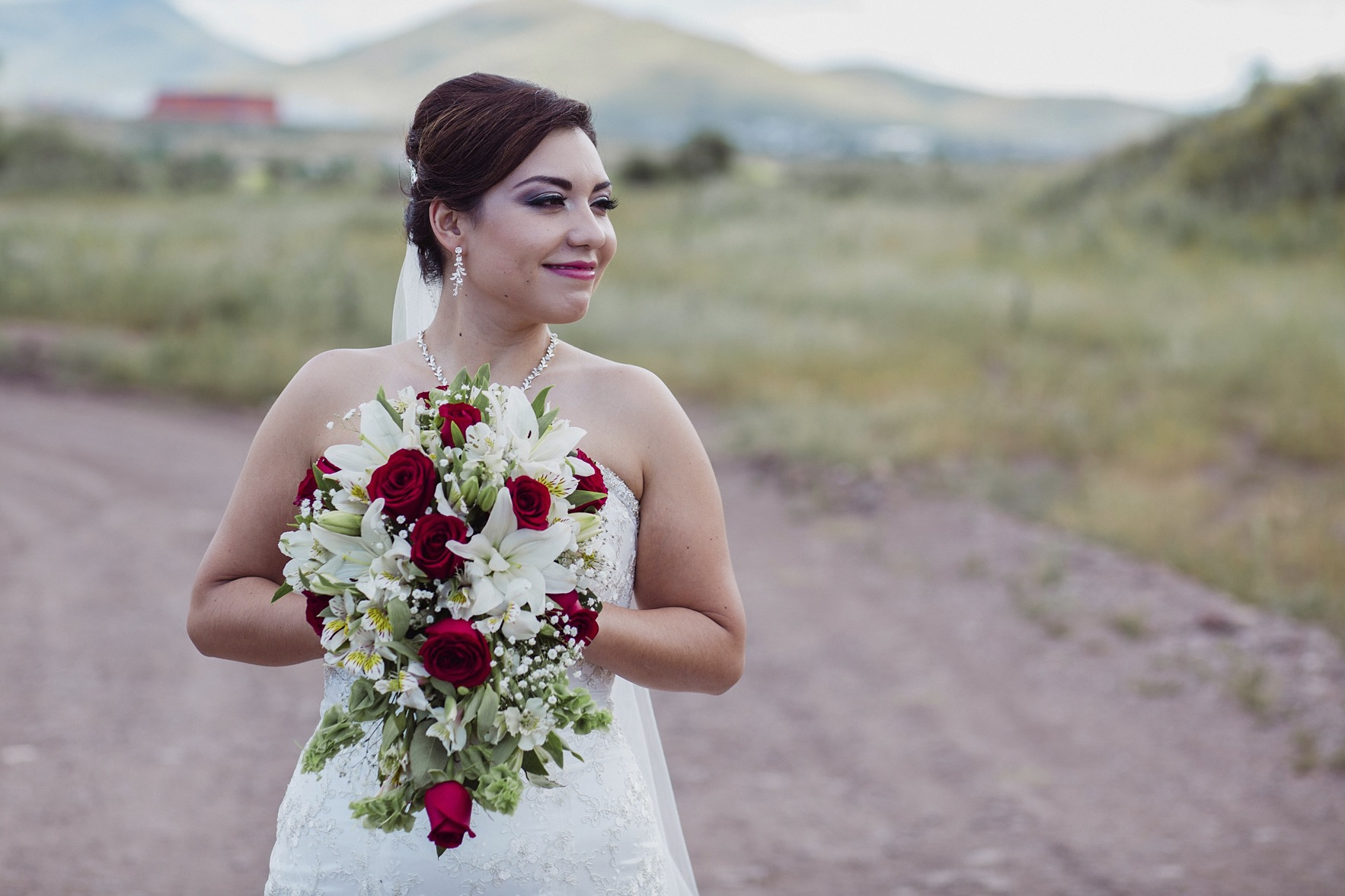 fotografo_profesional_bodas_xv_chihuahua_zacatecas_mexico-28